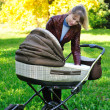 Stock Photo: Mother with a baby carriage