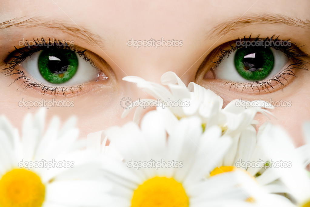 Stare of green women eyes with chamomiles bouquet — Stock Photo #3337844