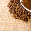 Coffee beans and powder — Stock Photo