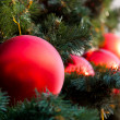 Red balls on the fur tree — Stock Photo