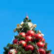 Green fur tree with blue sky — Stock Photo