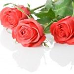 Three red roses boquet — Stock Photo #3348333