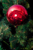 большой красный елочный шар — Стоковое фото
