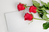 Three roses with blank card — Stock Photo