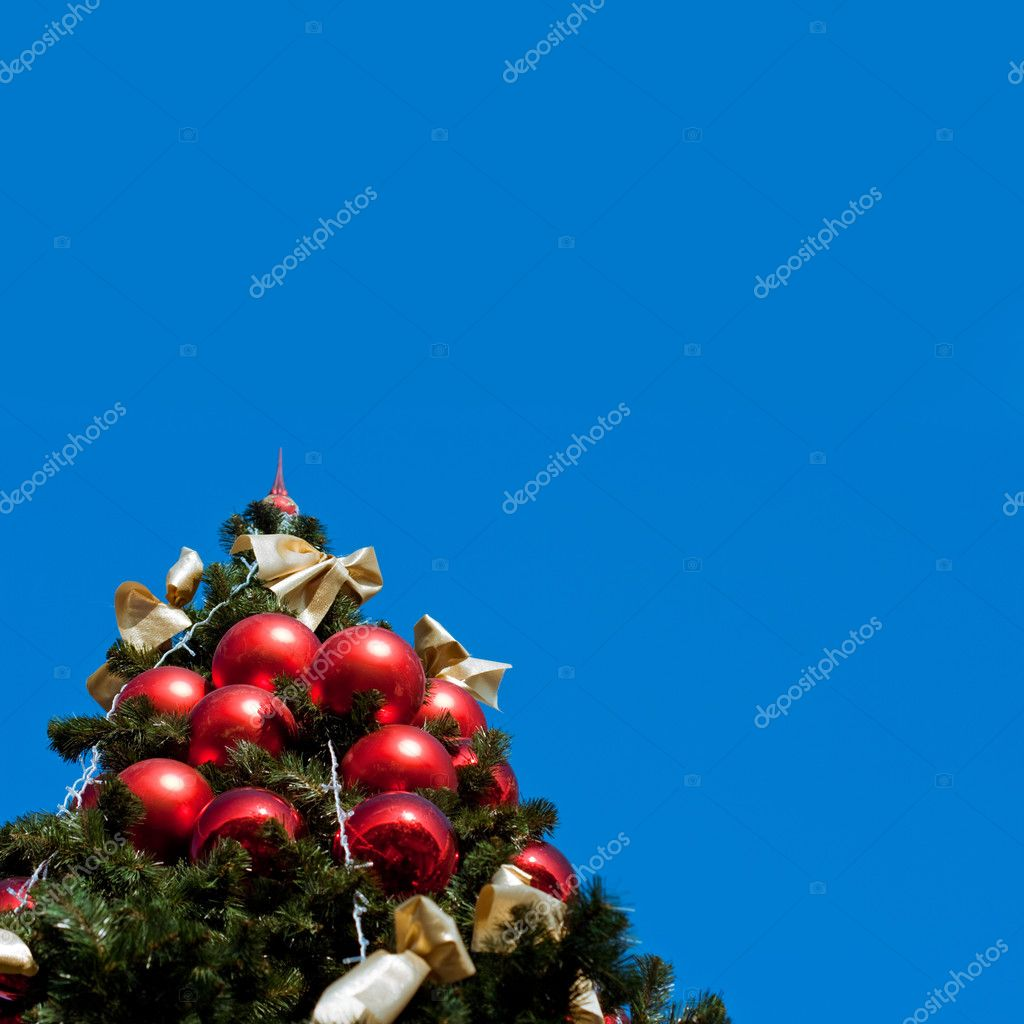 Fur tree with blue sky, copy space for the text — Stock Photo #3348300