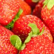 Strawberry background — Stock fotografie