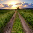 Country road under sunset — Stock Photo