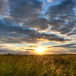 Stock Photo: Sunset over field