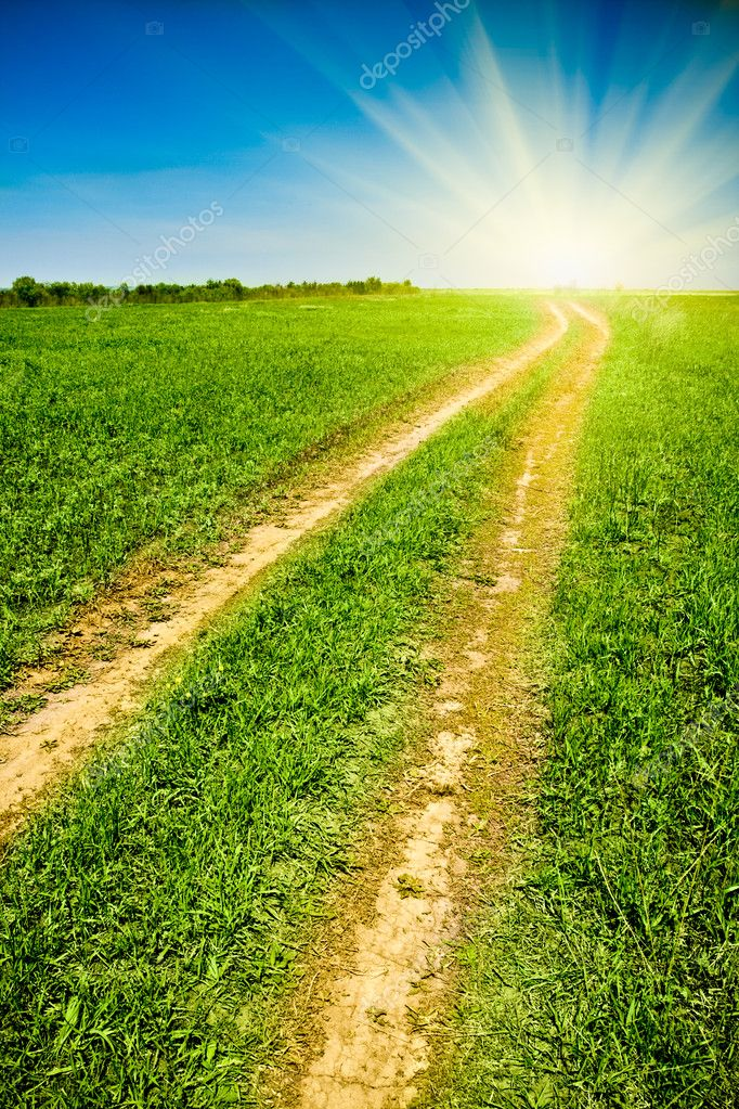 Country road to the sun, green field blue sky — Stock Photo #3450785