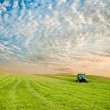 Tractor in the field — Stock Photo