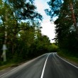 Road in deep forest - Foto de Stock