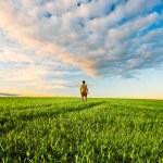 Man on green field under sunset skies — Stock Photo #3482878