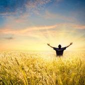 Człowiek w polu pszenicy — Zdjęcie stockowe