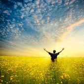 Mannen i gula fältet — Stockfoto