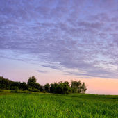 Violet sunset — Stock Photo