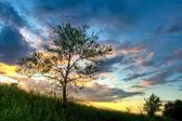 Güzel gün batımı — Stok fotoğraf