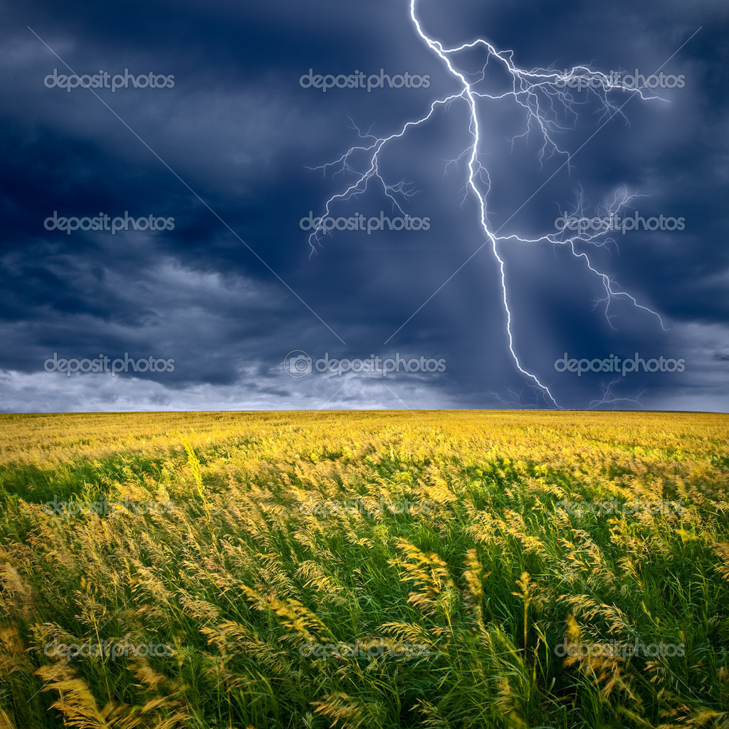 Lightning flashes above the filed  Stock Photo #3482379