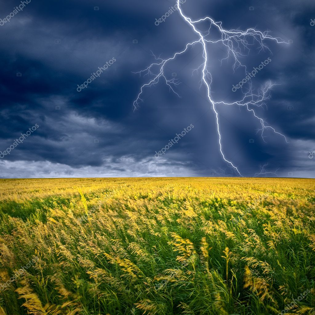 Lightning flashes above the filed — Foto de Stock   #3482379
