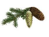 Fir branch, fir cones, new year's toy isolated on white — Stock Photo