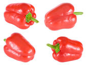 Four sweet bulgarian peppers — Stock Photo