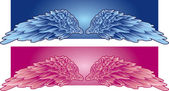 Angels wings — Stock Vector