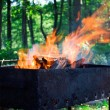 Fire in a brazier — Stock Photo