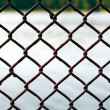Lattice — Stock Photo #3716047