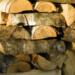 Logs — Stock Photo #3921876