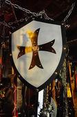 Shield of the Crusader. — Stock Photo