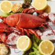 FRESH LOBSTER . - 图库照片