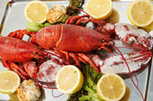 FRESH LOBSTER . — 图库照片