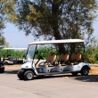 Stock Photo: GOLF CARS .