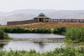 Comentarios sobre el sitio en el lago. — Foto de Stock