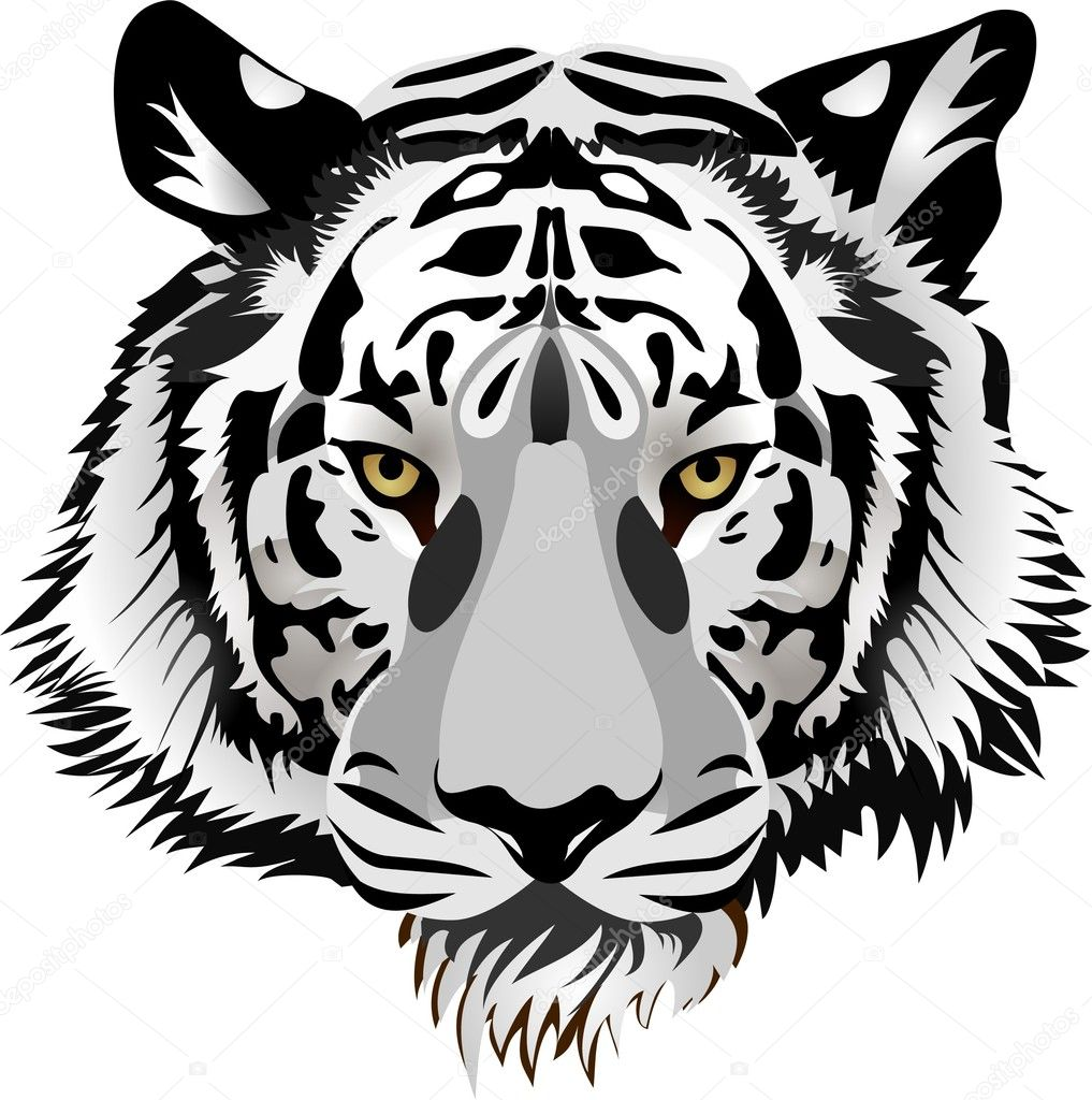 Tiger head.Vector — Stock Vector © Tratatushki #3341740