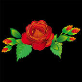 Red rose on a black background. Vector — Stock Vector