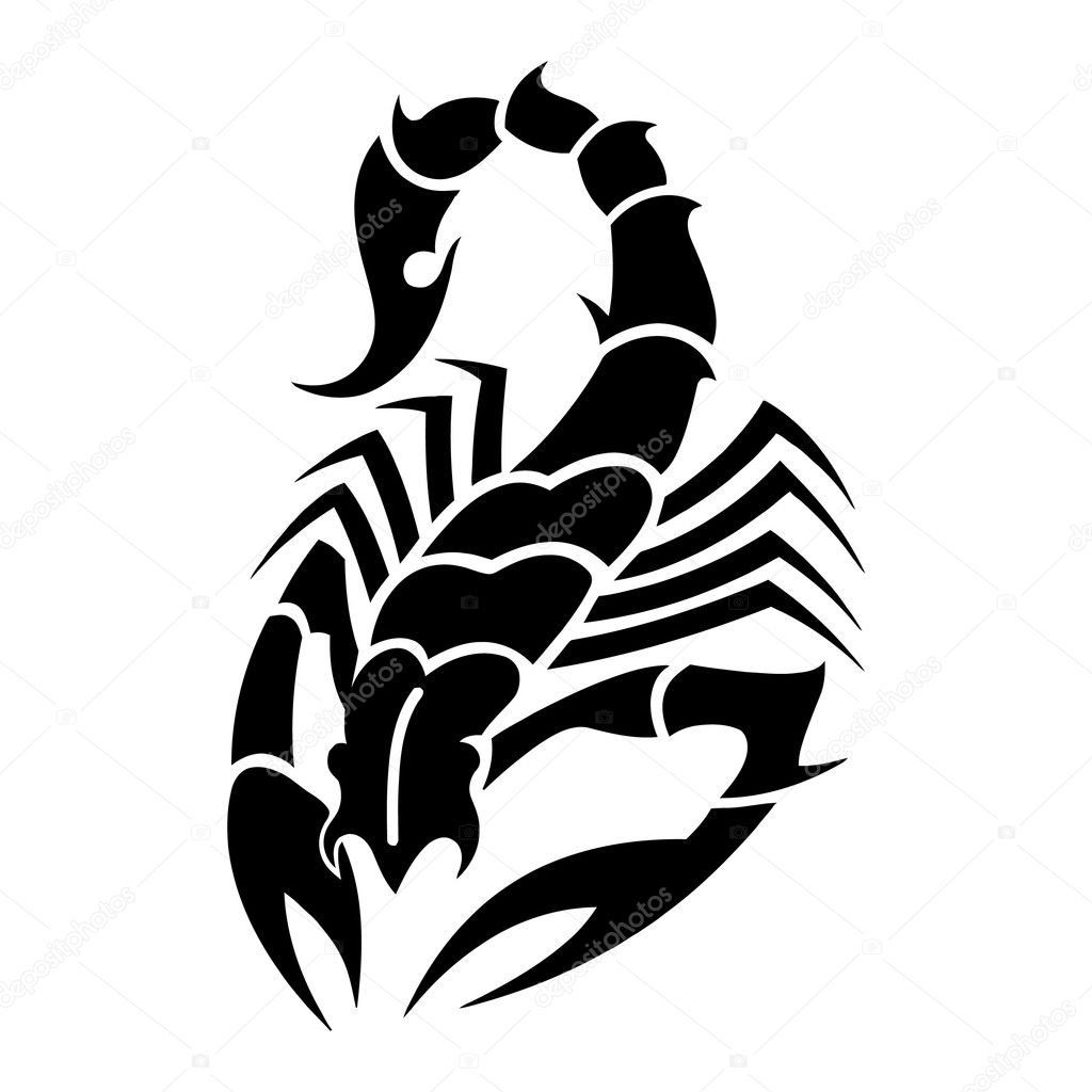 Scorpion Tail Drawing Tattoo Black Scorpion With