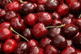 Sweet cherry. — Stock Photo