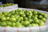 Fresh limes at the market — Stock Photo