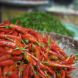 Fresh red and green chilli pepper — ストック写真
