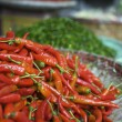Stock Photo: Fresh red and green chilli pepper