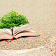 Stock Photo: Book and tree
