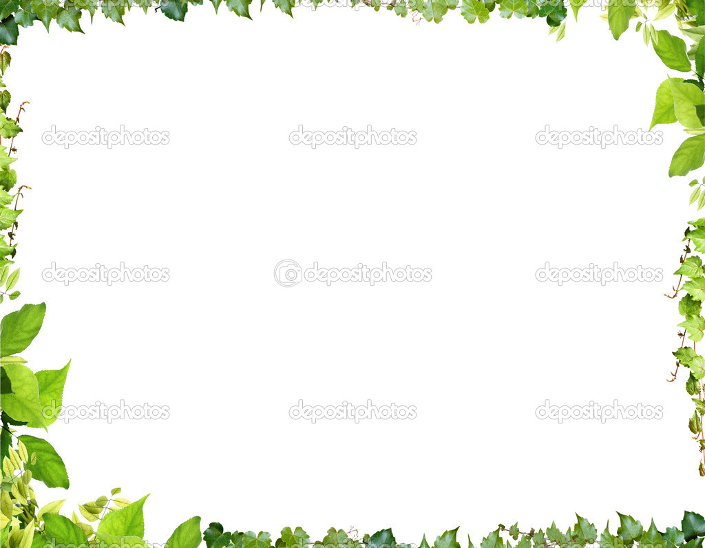 Green frame with leaves on the white background — Stock Photo #3422811