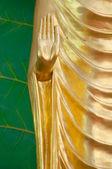 Abhaya Mudra Buddha Hand — Stock Photo