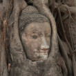 Royalty-Free Stock Photo: The Image of Ayutthaya