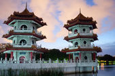 Chinese Twin Pagoda — Stock Photo