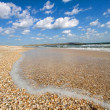 Stock Photo: Seashore