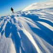 Stock Photo: Snowy landscape