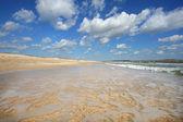 Paisaje de la orilla del mar — Foto de Stock
