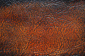 Brown leather texture — Stock Photo