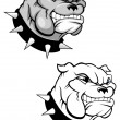 Stock Vector: Bulldog mascot